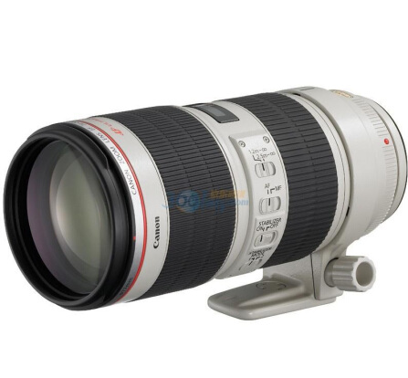 佳能(Canon) EF 70-200mm f/2.8L IS II USM 镜头  ¥12099.00